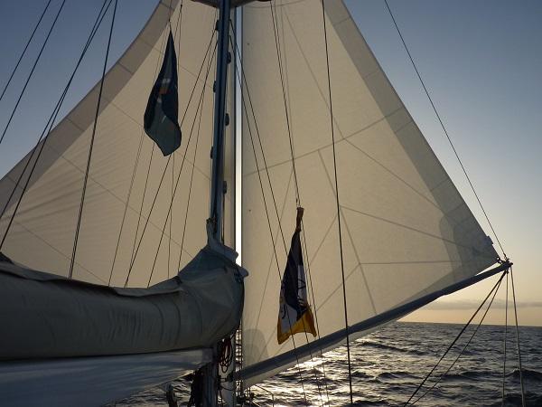 oceano-twin-sails